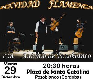 """Navidad Flamenca con """"Antonio de Pozoblanco"""" @ PLAZA DE SANTA CATALINA"""
