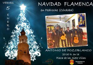 Navidad Flamenca con Antonio de Pozoblanco @ PLAZA DE LAS SIETE VILLAS